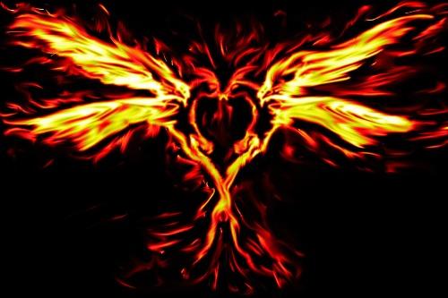 Phoenix_love_by_punkisstillcool